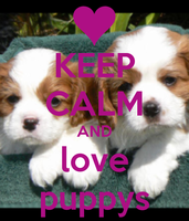 Keep-calm-and-love-puppys-37